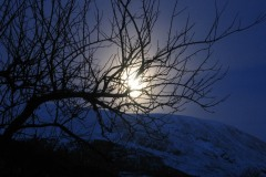 Moonlit Snow Hills at Christmas